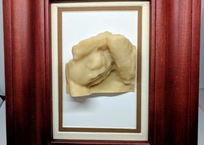 3D Sculpture framed 10
